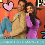 Gumsum Hai Dil Mera Lyrics Kya Love Story Hai 2007