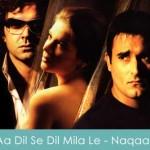 Aa Dil Se Dil Mila Le Lyrics Naqaab 2007