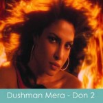 dushman mera lyrics don 2