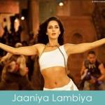 jaaniya laambiya lyrics ek tha tiger