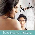 Tera Nasha Lyrics Nasha