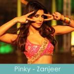 pinky lyrics zanjeer priyanka chopra