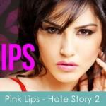 pink lips lyrics hate story 2 2014 sunny leone