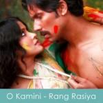 O Kamini Lyrics Sonu Nigam Rang Rasiya 2014