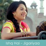 ishq hai lyrics javed ali - jigariyaa 2014