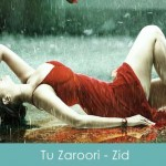 Tu Zaroori Sa Hai Mujhko Lyrics Sunidhi Chauhan Zid 2014
