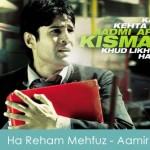 Ha Reham Mehfuz Lyrics - Aamir 2008