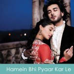 Hamein Bhi Pyaar Kar Le Lyrics - Jaanisaar 2015