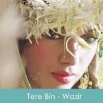 Tere Bin Lyrics - Wazir 2015