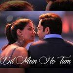 Dil Mein Ho Tum Lyrics