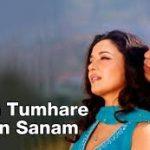 Hum Tumhare Hain Sanam (Title) Lyrics