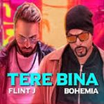 Tere Bina Rap Lyrics