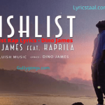 Wishlist Rap Lyrics - Dino James (1)