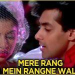 Mere Rang Mein Rangne Wali Song Lyrics (1)