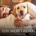 Teri Meri Ladayi Lyrics - Maninder Buttar (1)