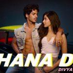 Shana Dil Song Lyrics - Divya Kumar (1)