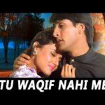 Tu Waqif Nahi Meri Deewangi Se Lyrics (1)