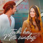 Tu Hi Hai Meri Zindagi Song Lyrics – Nikhil D'Souza (1)