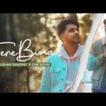 Tere Bina Song Lyrics (1)