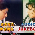 Zamaana Deewana Lyrics (1)
