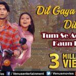 Dil Gaya Mera Dil Gaya Lyrics (1)