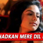 Yeh Dhadkan Mere Dil Ki Lyrics (1)